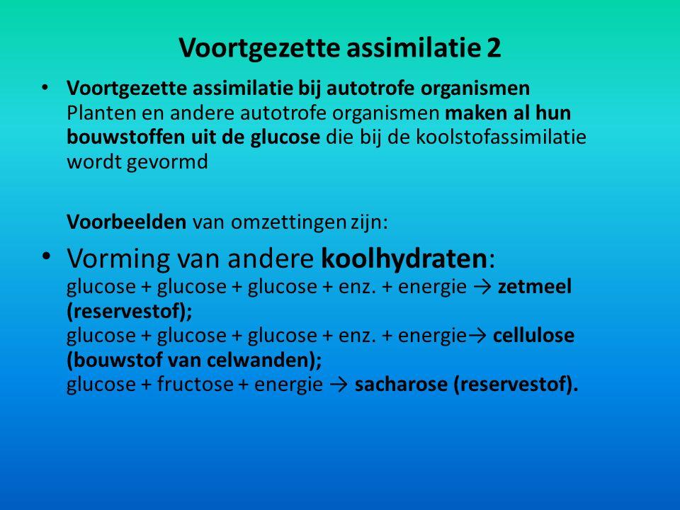 Voortgezette assimilatie 2 Voortgezette assimilatie bij autotrofe organismen Planten en andere autotrofe organismen maken al hun bouwstoffen uit de gl