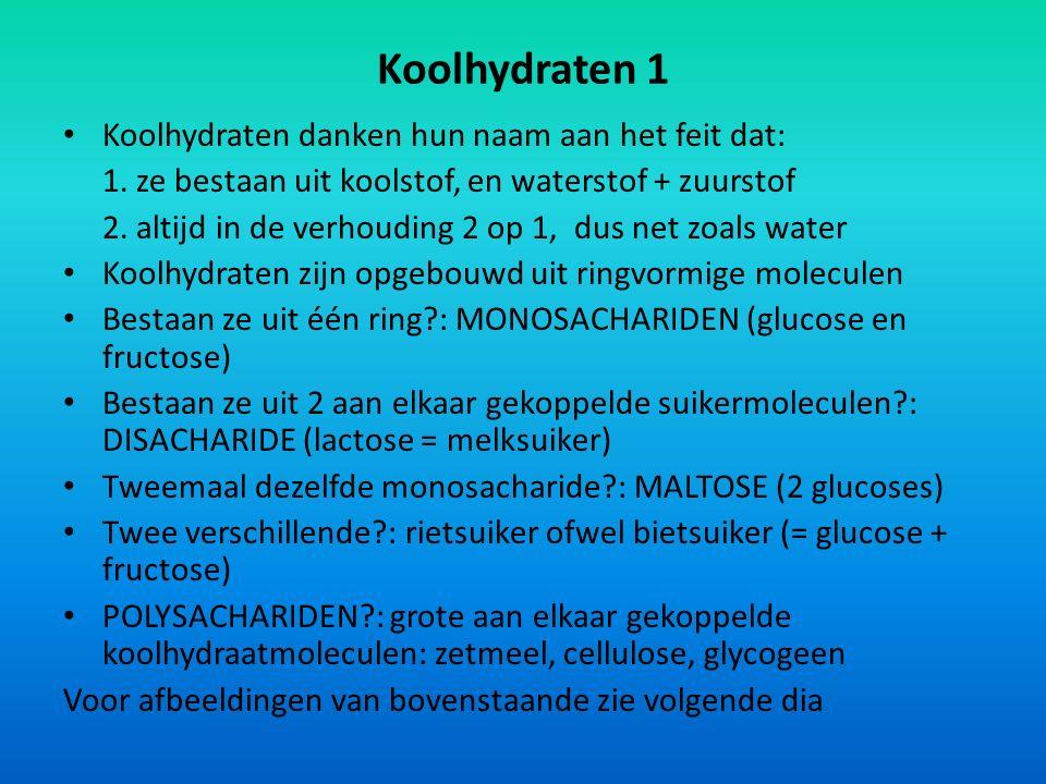 Koolhydraten 1 Koolhydraten danken hun naam aan het feit dat: 1. ze bestaan uit koolstof, en waterstof + zuurstof 2. altijd in de verhouding 2 op 1, d