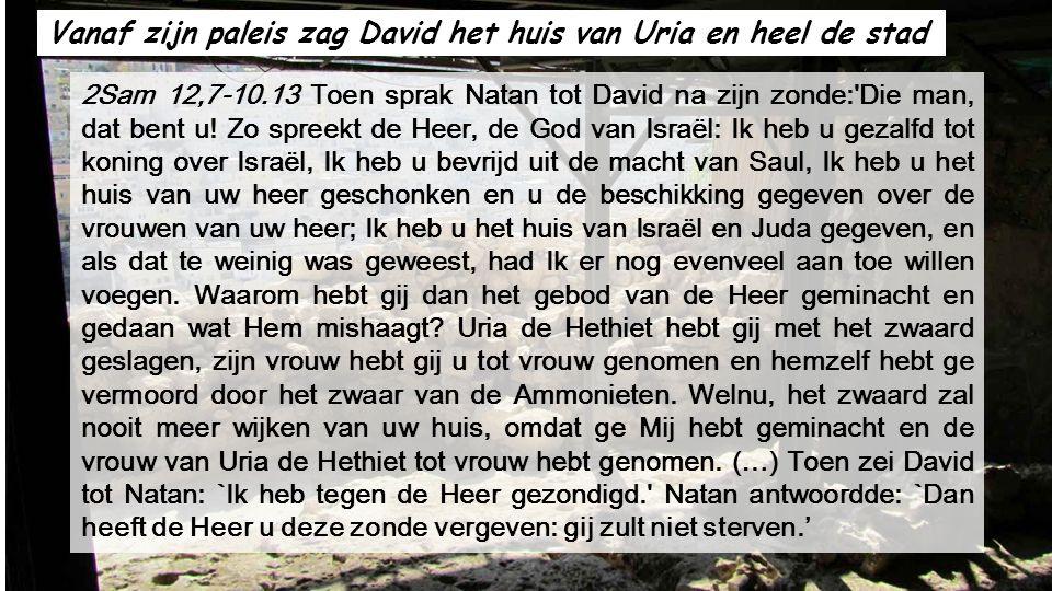 In relatie met de Lezing uit 2 Samuël over koning David, zullen we de Stad van David zien te Jeruzalem.