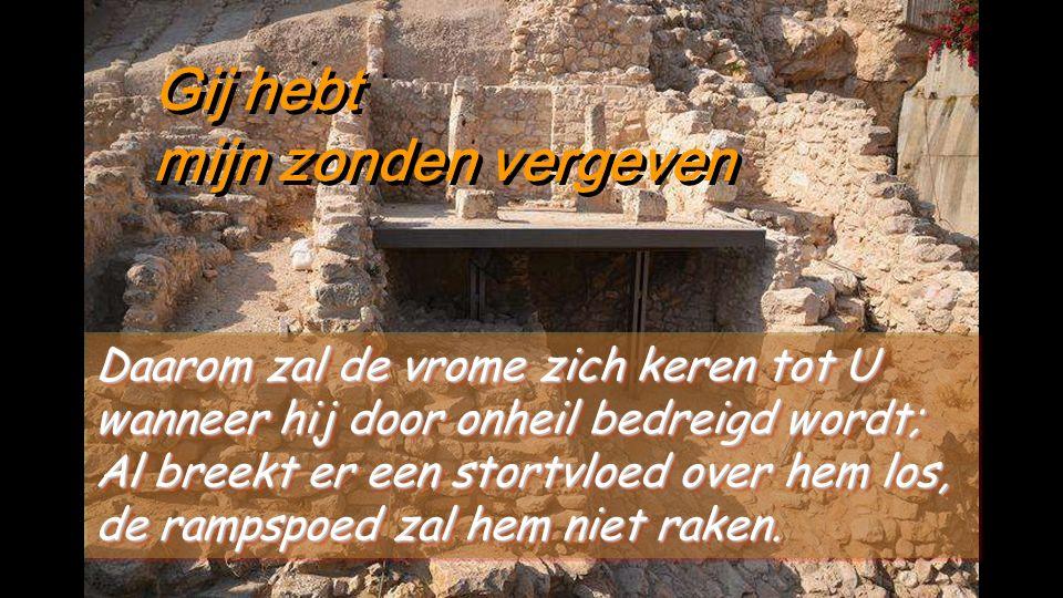 Gij hebt mijn zonden vergeven Gij hebt mijn zonden vergeven Ik heb mijn zonde beleden voor U, mijn schuld niet langer ontkend.