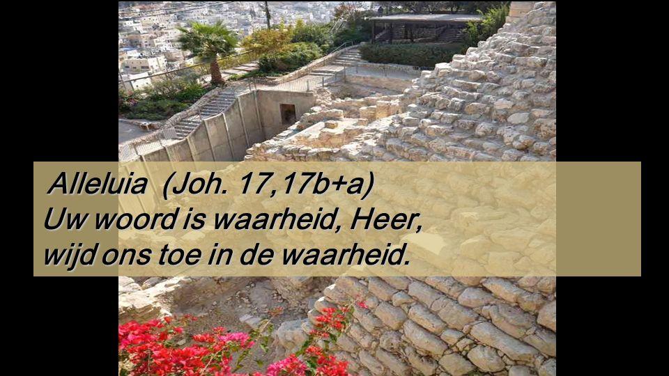 Gal 2,16.19-21 Broeders en zusters, Wij weten dat de mens niet gerechtvaardigd wordt door de wet te onderhouden, maar alleen door het geloof in Jezus Christus.