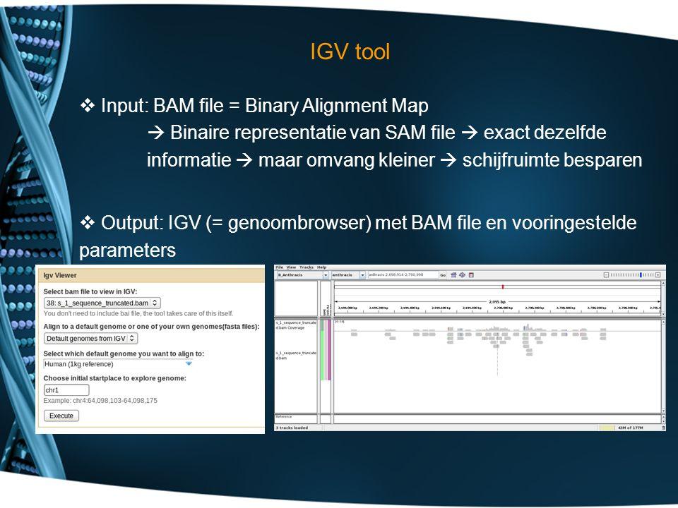 IGV tool  Input: BAM file = Binary Alignment Map  Binaire representatie van SAM file  exact dezelfde informatie  maar omvang kleiner  schijfruimte besparen  Output: IGV (= genoombrowser) met BAM file en vooringestelde parameters