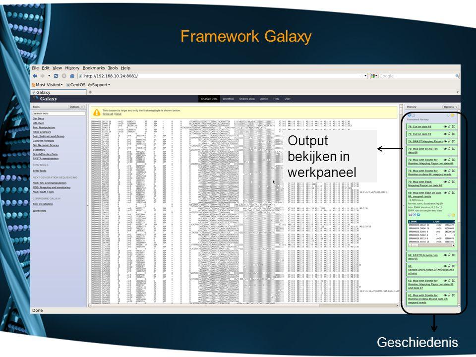 Framework Galaxy Geschiedenis Output bekijken in werkpaneel