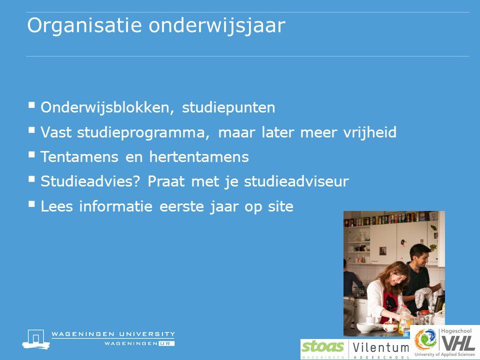 Organisatie onderwijsjaar  Onderwijsblokken, studiepunten  Vast studieprogramma, maar later meer vrijheid  Tentamens en hertentamens  Studieadvies.