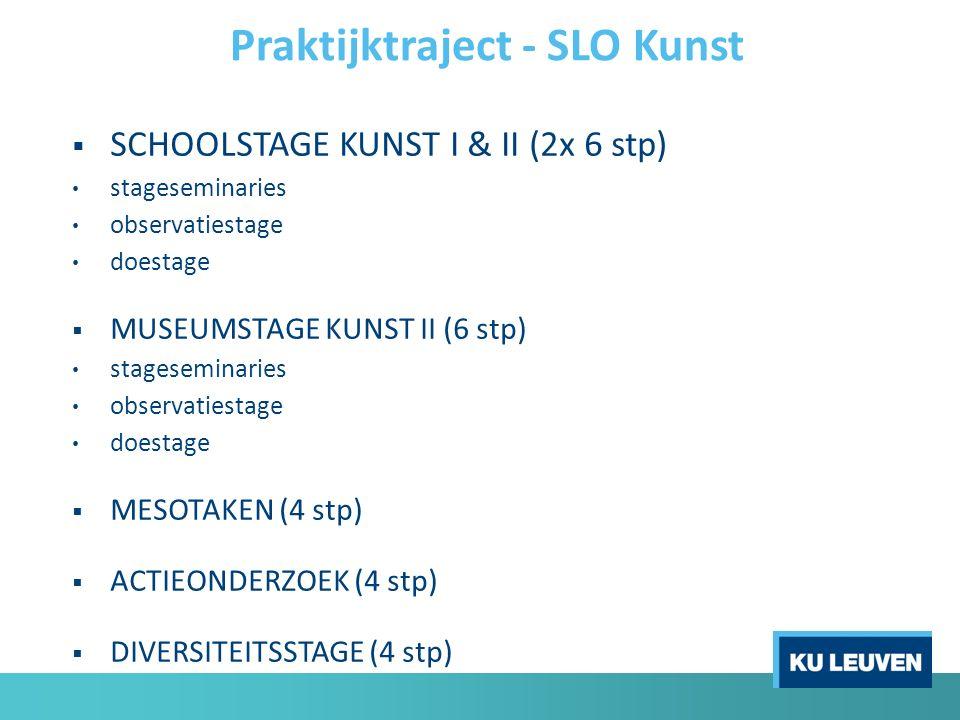  SCHOOLSTAGE KUNST I & II (2x 6 stp) stageseminaries observatiestage doestage  MUSEUMSTAGE KUNST II (6 stp) stageseminaries observatiestage doestage  MESOTAKEN (4 stp)  ACTIEONDERZOEK (4 stp)  DIVERSITEITSSTAGE (4 stp) Praktijktraject - SLO Kunst