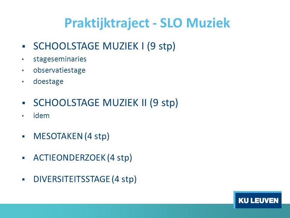  SCHOOLSTAGE MUZIEK I (9 stp) stageseminaries observatiestage doestage  SCHOOLSTAGE MUZIEK II (9 stp) idem  MESOTAKEN (4 stp)  ACTIEONDERZOEK (4 stp)  DIVERSITEITSSTAGE (4 stp) Praktijktraject - SLO Muziek