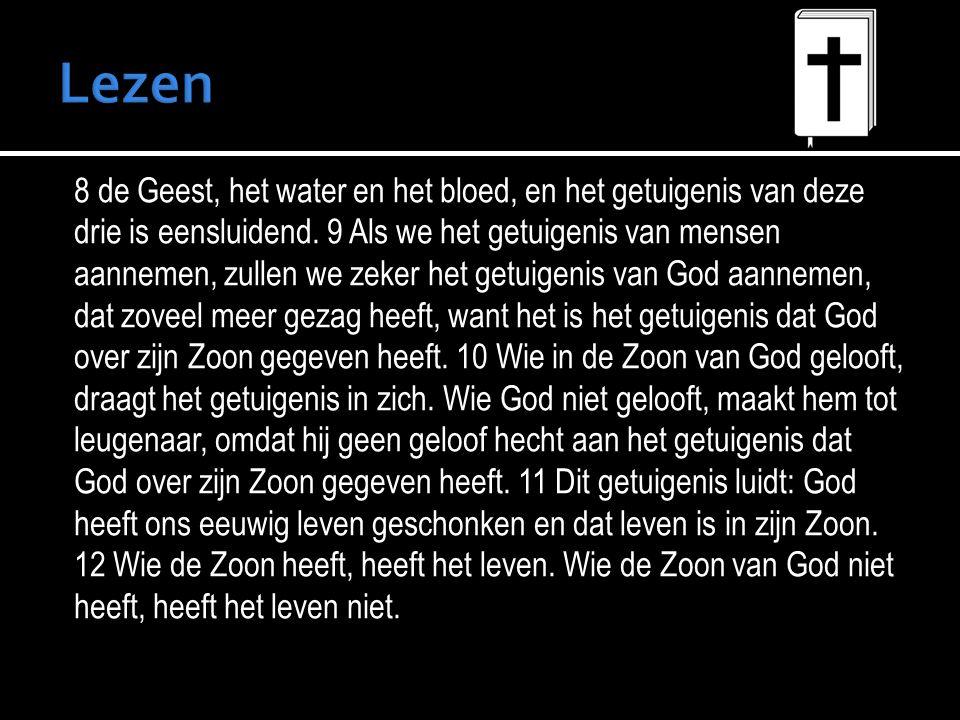8 de Geest, het water en het bloed, en het getuigenis van deze drie is eensluidend.