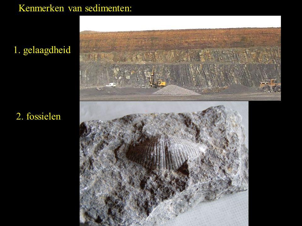 Kenmerken van sedimenten: 1. gelaagdheid 2. fossielen
