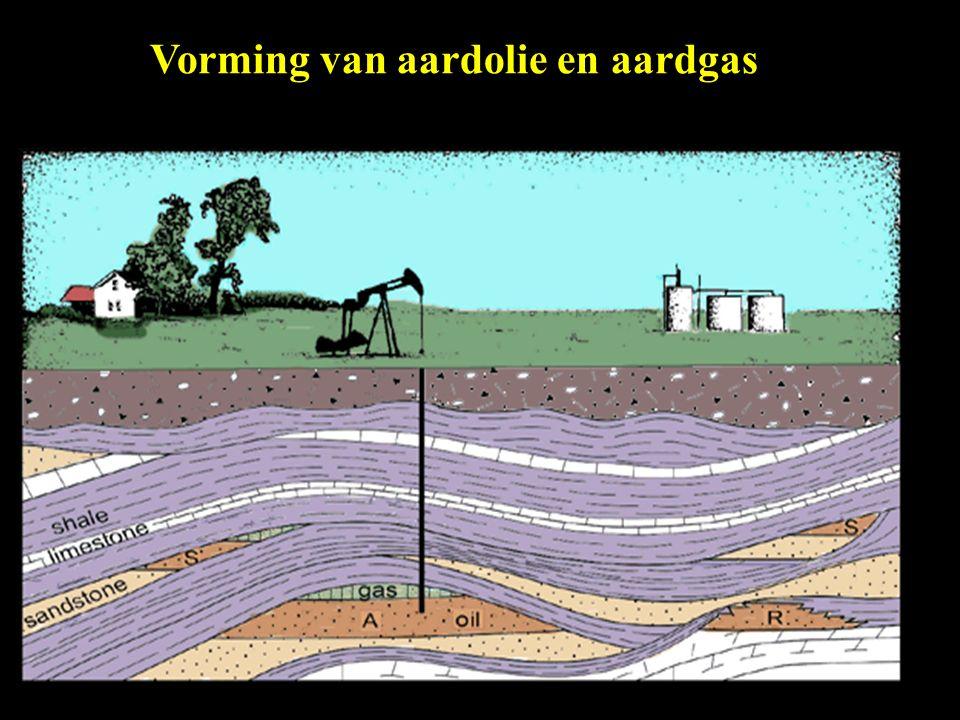 Vorming van aardolie en aardgas