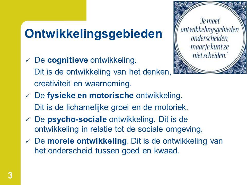 3 Ontwikkelingsgebieden De cognitieve ontwikkeling.