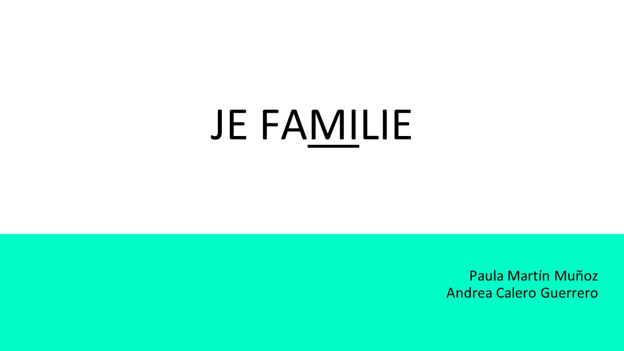 De familie (-s) (La familia en general)
