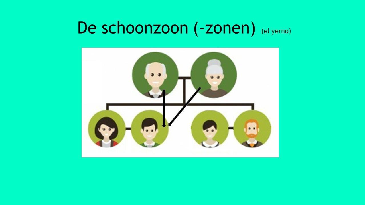De schoonzoon (-zonen) (el yerno)