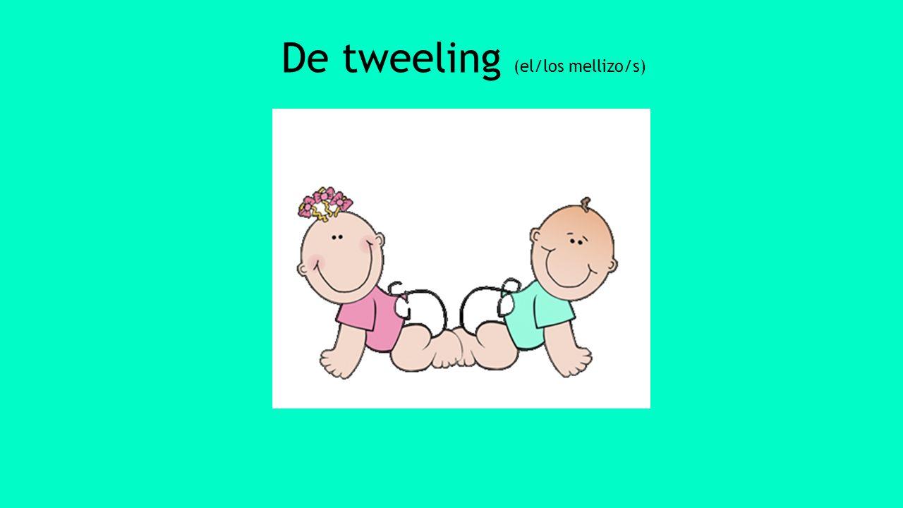 De tweeling (el/los mellizo/s)
