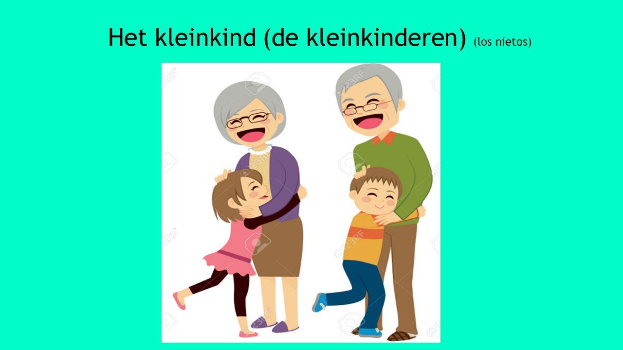 Het kleinkind (de kleinkinderen) (los nietos)