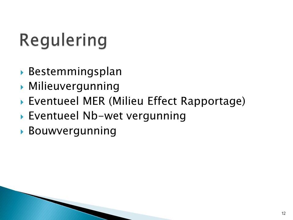  Bestemmingsplan  Milieuvergunning  Eventueel MER (Milieu Effect Rapportage)  Eventueel Nb-wet vergunning  Bouwvergunning 12