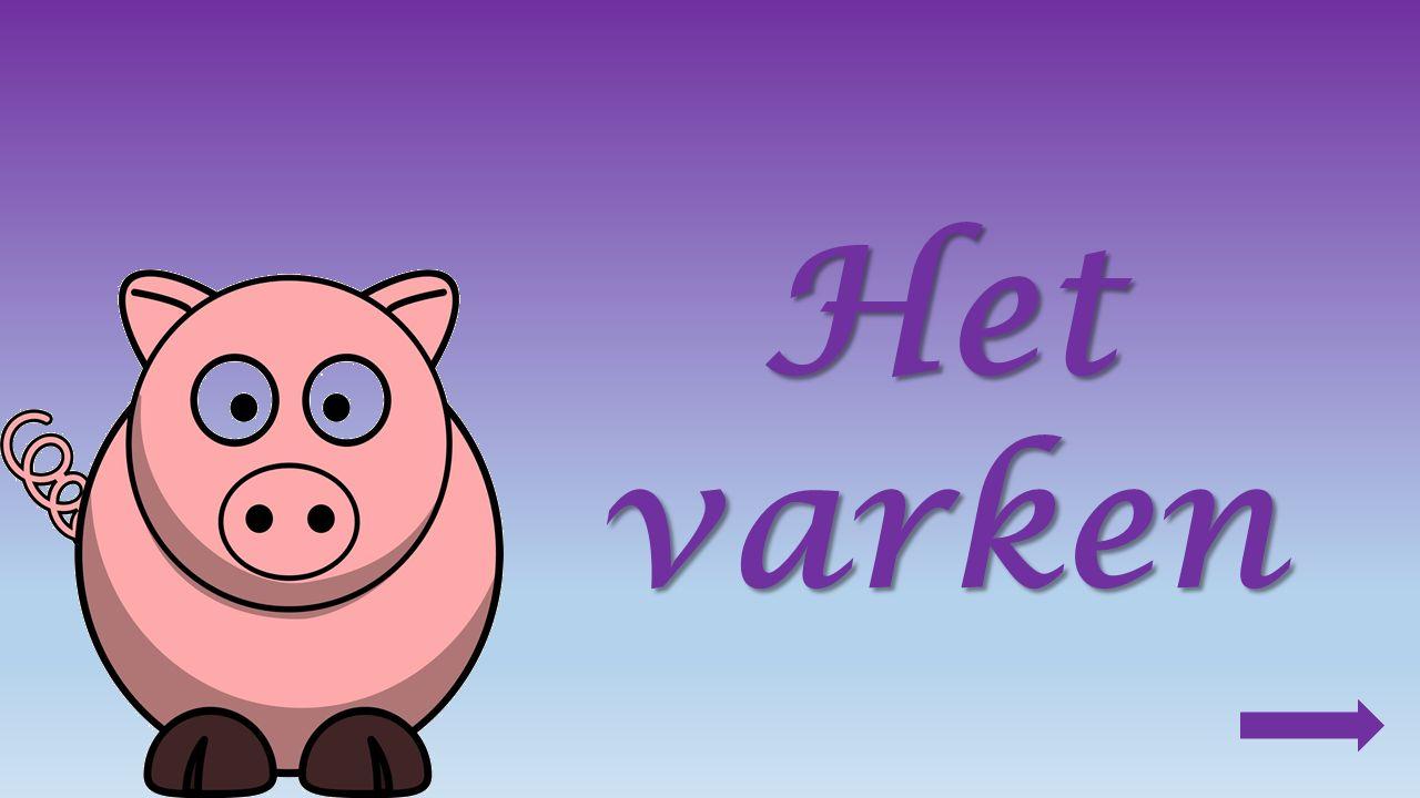 Producten van het varken : vlees bv. kotelet Gehakt penselen