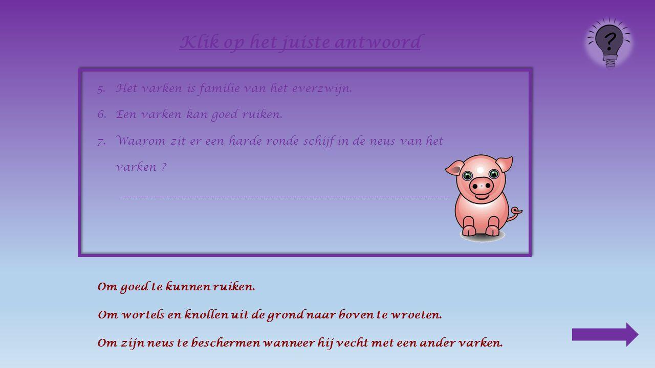 5.Het varken is familie van het everzwijn. 6.Een varken kan goed ____________.