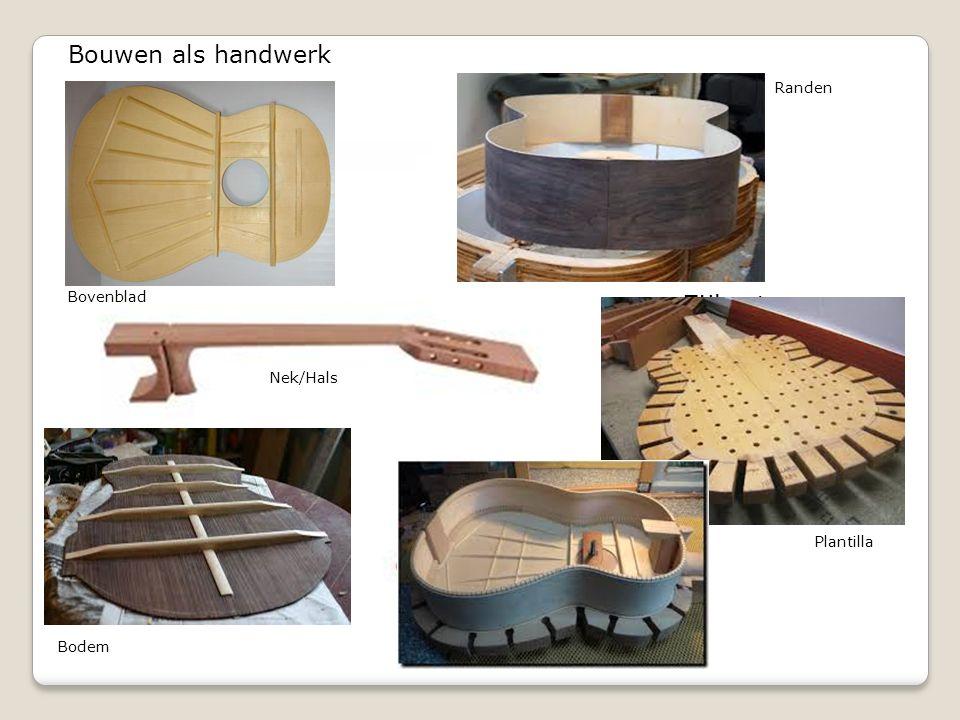 Bovenblad Bodem Nek/Hals Zijkanten Bouwen als handwerk Randen Plantilla
