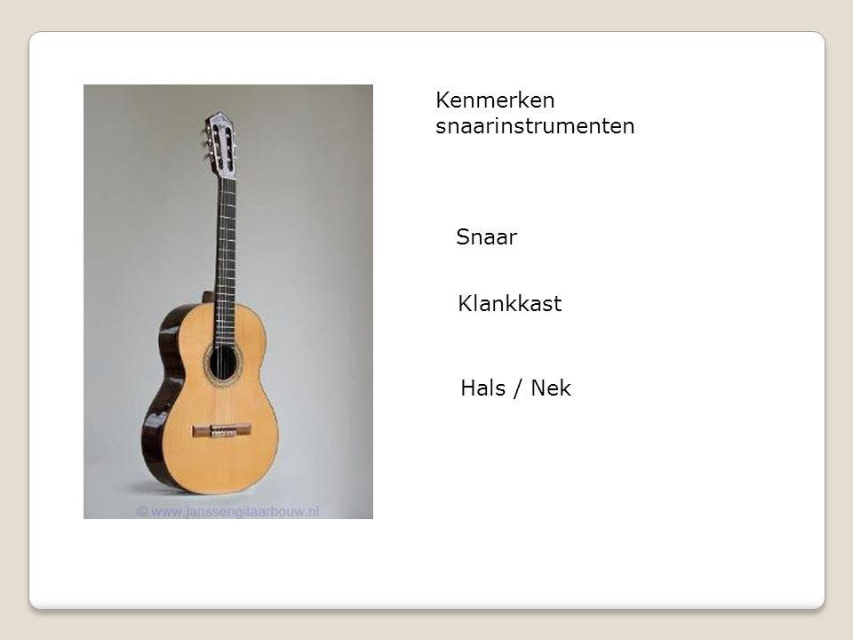 Kenmerken snaarinstrumenten Snaar Klankkast Hals / Nek