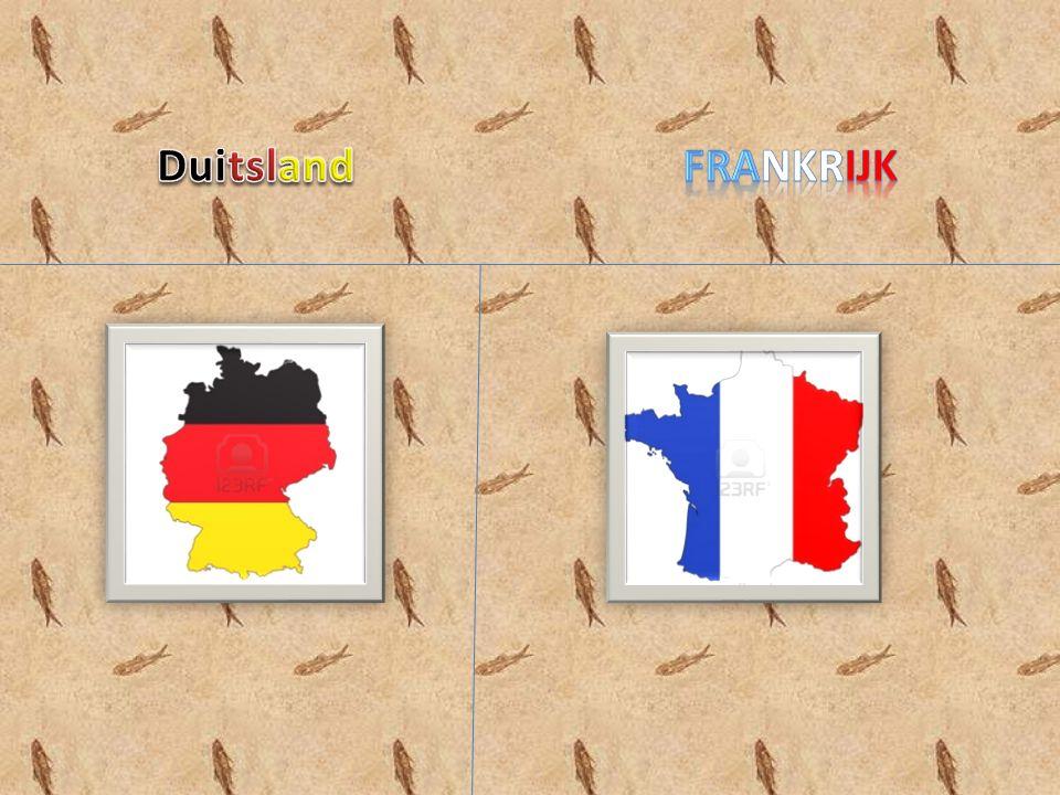 Invoering van de EURO