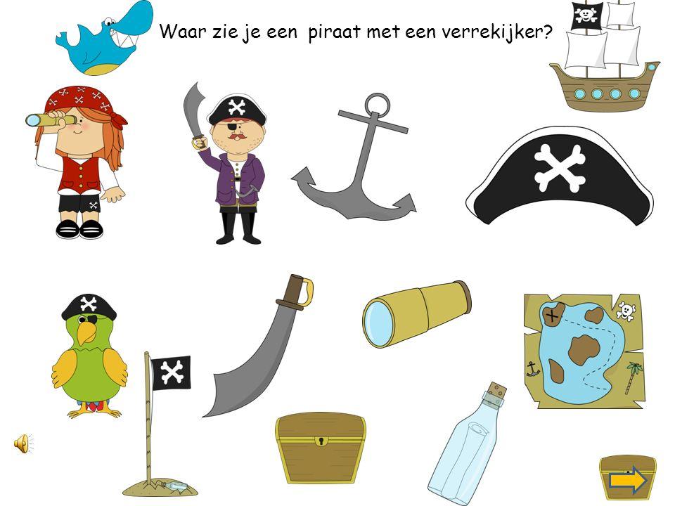 Waar zie je een piraat met een zwaard?