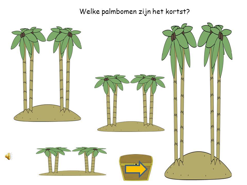 Welke palmbomen zijn het langst?