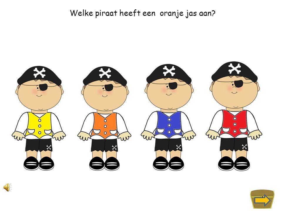 Welke piraat heeft een gele jas aan?