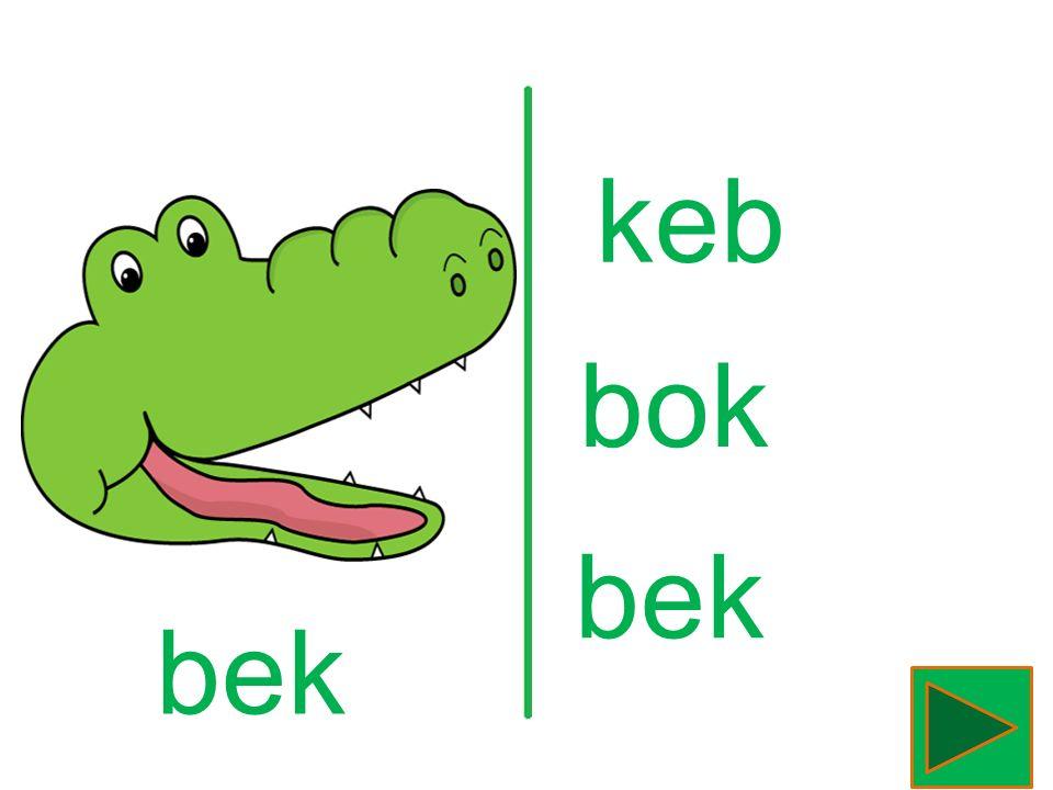 krokodil krikidol lidokork