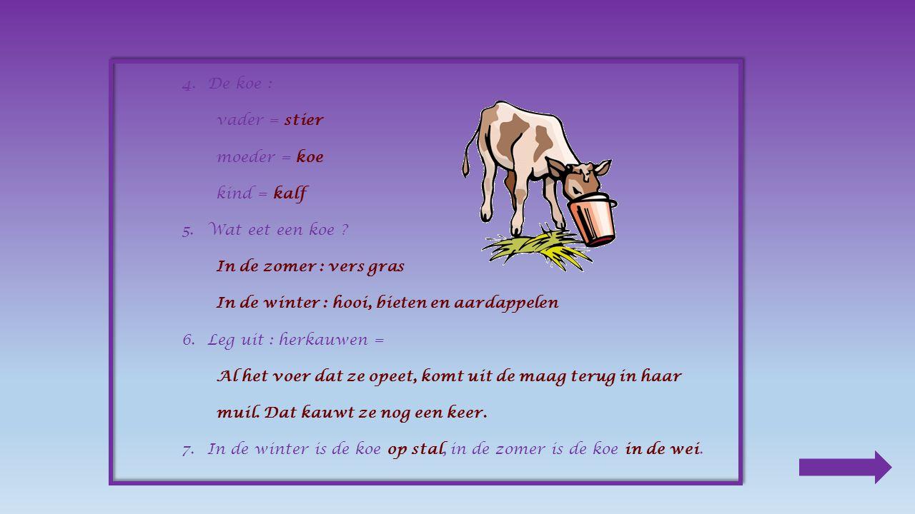 Buiten of op stal Van de kou heeft de koe niet veel last. Toch staat ze in de winter op stal. Het land is dan te nat en er is te weinig gras.