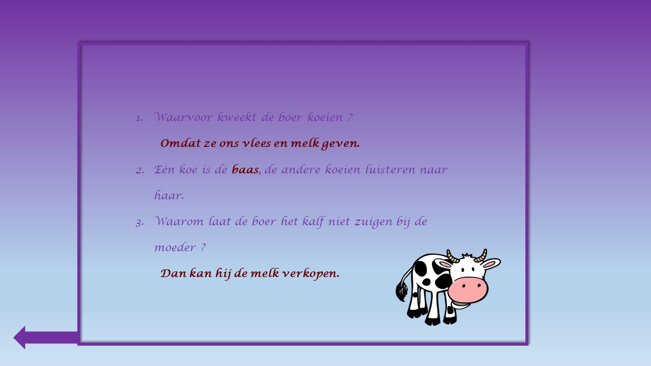 Producten van de koe : melk boter kaas yoghurt vlees