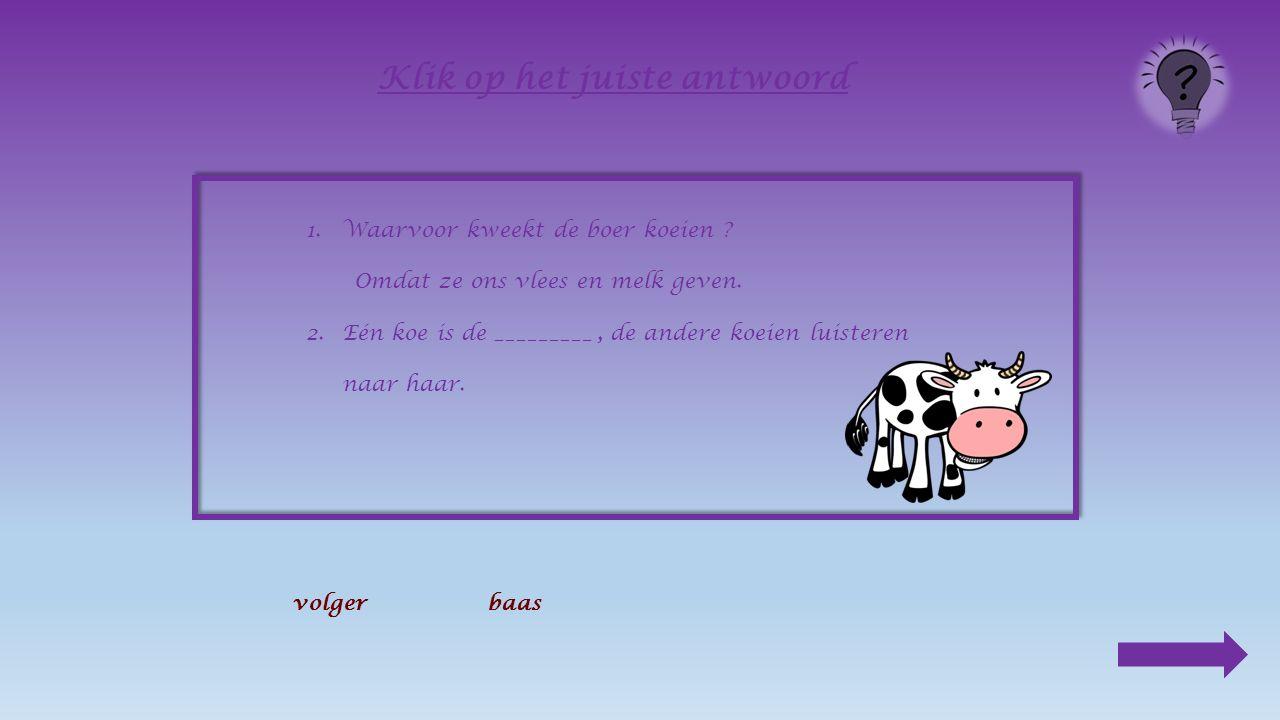 1.Waarvoor kweekt de boer koeien ? _____________________________________________ Klik op het juiste antwoord Omdat ze het gras van onze weiden kort ho