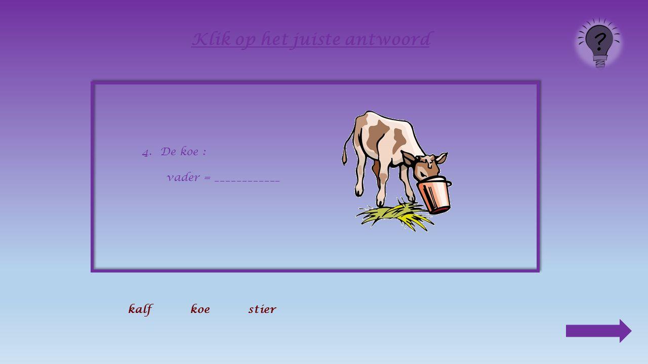 Buiten of op stal Van de kou heeft de koe niet veel last.