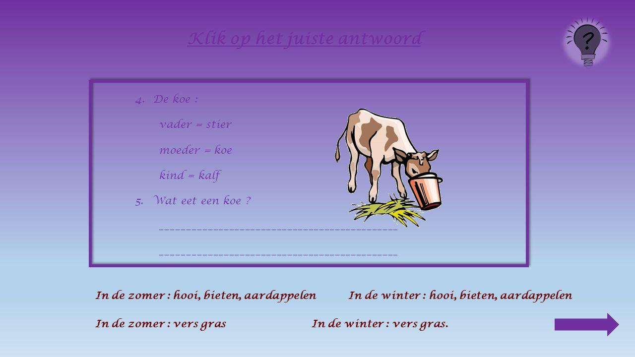 4.De koe : vader = stier moeder = koe kind = _________ Klik op het juiste antwoord kalfkoestier