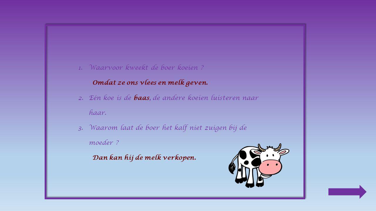 1.Waarvoor kweekt de boer koeien .Omdat ze ons vlees en melk geven.