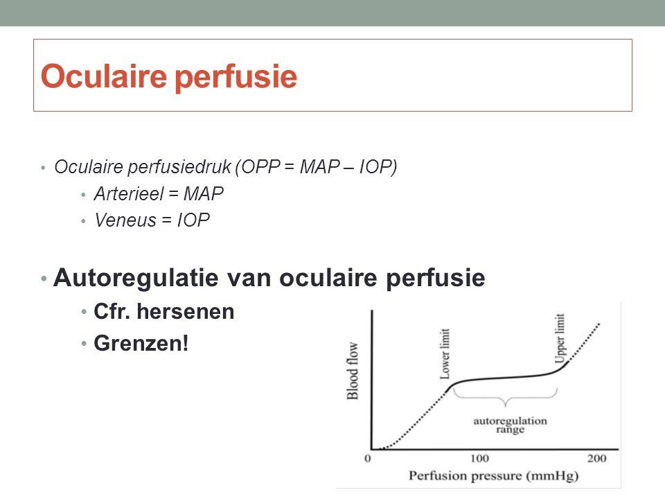 Oculaire perfusiedruk (OPP = MAP – IOP) Arterieel = MAP Veneus = IOP Autoregulatie van oculaire perfusie Cfr. hersenen Grenzen! Oculaire perfusie