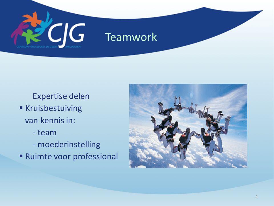 4 Teamwork Expertise delen  Kruisbestuiving van kennis in: - team - moederinstelling  Ruimte voor professional
