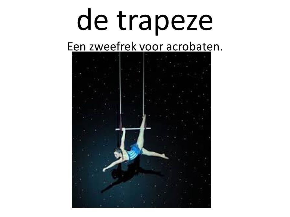 de trapeze Een zweefrek voor acrobaten.