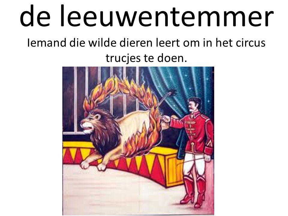 de leeuwentemmer Iemand die wilde dieren leert om in het circus trucjes te doen.