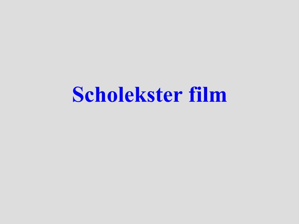 Scholekster film