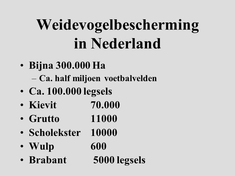 Weidevogelbescherming in Nederland Bijna 300.000 Ha –Ca.