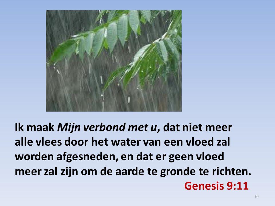 Ik maak Mijn verbond met u, dat niet meer alle vlees door het water van een vloed zal worden afgesneden, en dat er geen vloed meer zal zijn om de aarde te gronde te richten.