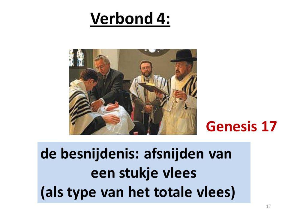 Verbond 4: de besnijdenis: afsnijden van een stukje vlees (als type van het totale vlees) Genesis 17 17