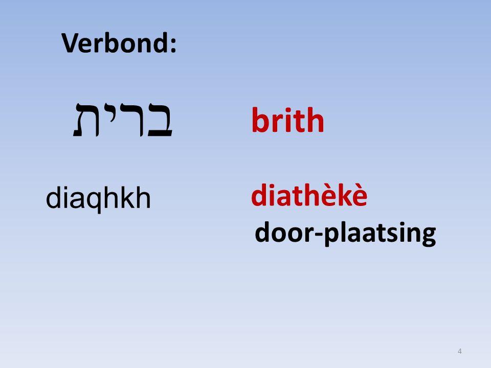 Verbond: ברית diaqhkh brith diathèkè door-plaatsing 4