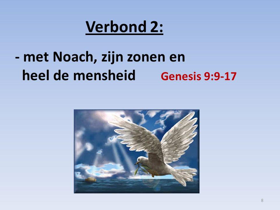 Verbond 2: - met Noach, zijn zonen en heel de mensheid Genesis 9:9-17 8