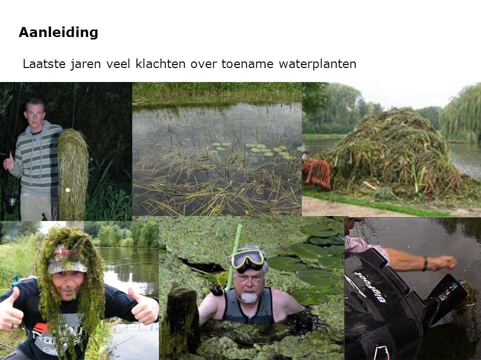 Aanleiding Laatste jaren veel klachten over toename waterplanten