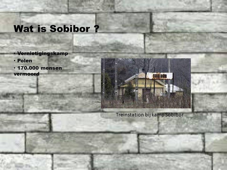 Wat is Sobibor Vernietigingskamp Polen 170.000 mensen vermoord Treinstation bij kamp Sobibor