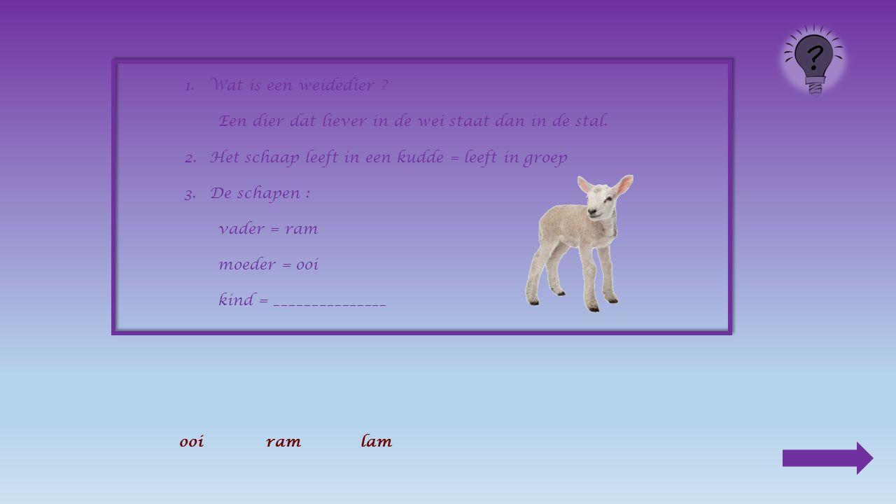 1.Wat is een weidedier . Een dier dat liever in de wei staat dan in de stal.