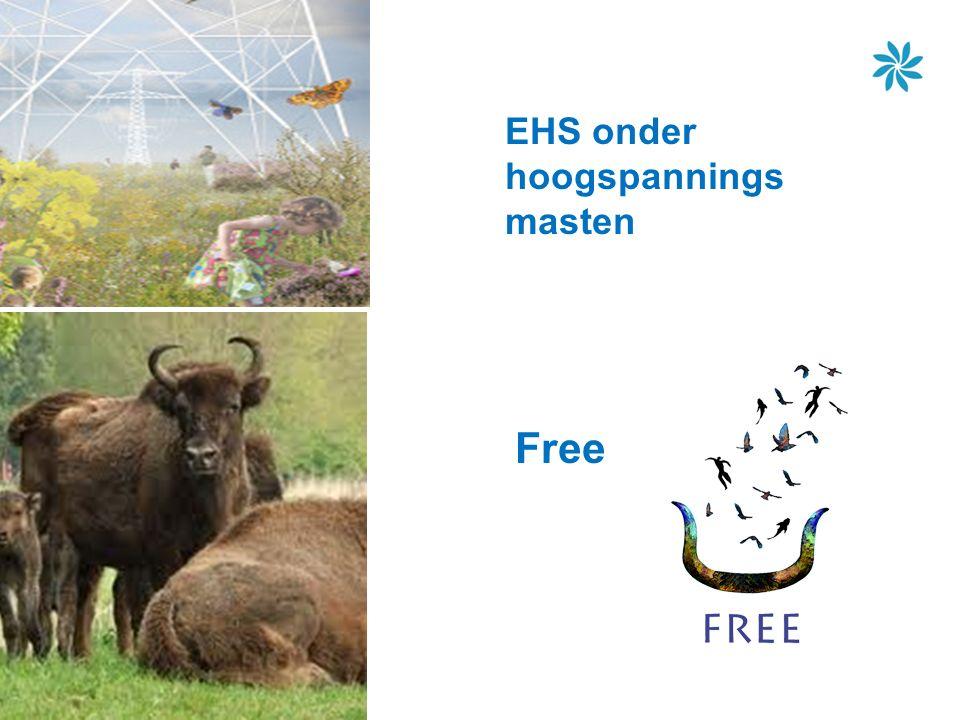 EHS onder hoogspannings masten Free