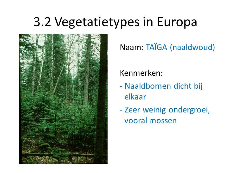 3.2 Vegetatietypes in Europa Naam: TAÏGA (naaldwoud) Kenmerken: - Naaldbomen dicht bij elkaar - Zeer weinig ondergroei, vooral mossen
