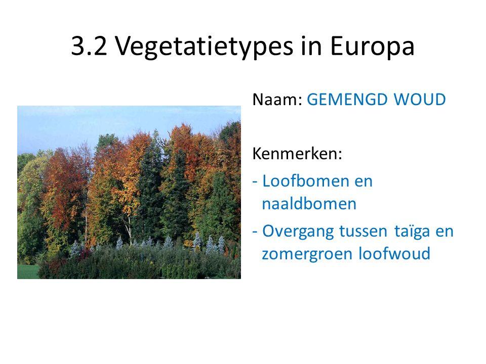 3.2 Vegetatietypes in Europa Naam: GEMENGD WOUD Kenmerken: - Loofbomen en naaldbomen - Overgang tussen taïga en zomergroen loofwoud